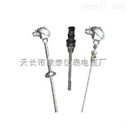 热电阻WZPK2-336S A级 -200-500°C