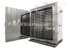 VDS2真空干燥箱VDS2