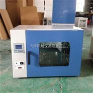 250℃电热恒温鼓风干燥箱 鼓风干燥箱 恒温干燥箱 干燥箱 烘箱 烤箱