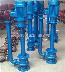 YWP双管液下式不锈钢排污泵 单管液下式不锈钢排污泵