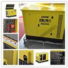 20KW大型汽油发电机组