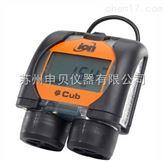 CPM-100CNCPM-100CN VOC检测仪