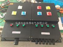 BXM8050防爆防腐照明配电箱BXM8050(工程塑料内装铸铝隔爆)