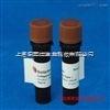 胶原酶Ⅲ|Collagenase Ⅲ