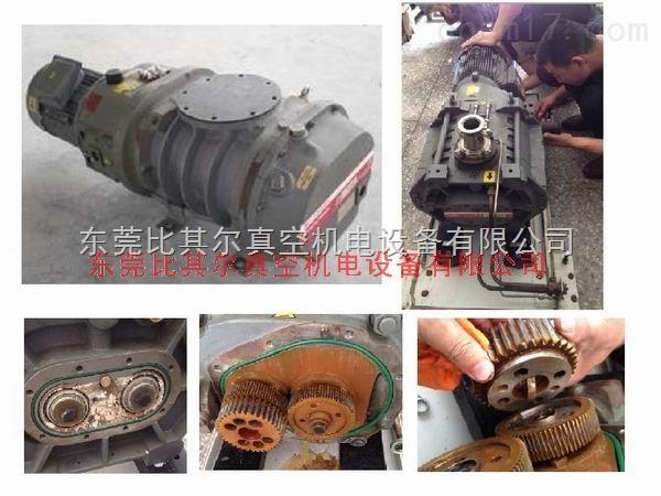 爱德华GV160真空泵维修保养