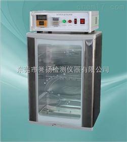 LT4007安全帽耐高温处理箱