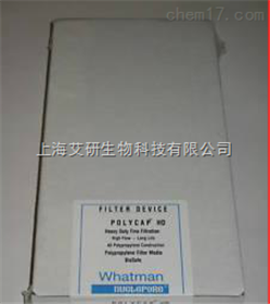 WhatmanPolycap 75TF PTFE囊式滤器6700-7502 0.2微米
