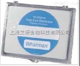 whatman聚碳酸酯膜/径迹蚀刻聚碳酸膜和聚酯膜