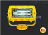 BLD530-40WBLD530-40W防爆巷道灯厂家推荐40W-LED防爆巷道照明灯