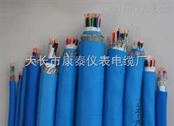 IA-KX-GBPJR 2*2*1.0补偿电缆