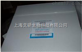 WHATMAN 1822-320 32CM GF/C玻璃纤维滤纸
