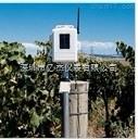 DAVIS无线叶面和土壤温湿度台站