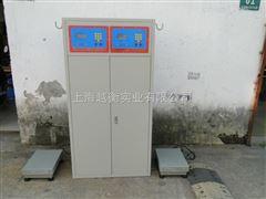 EXd液化天然气灌装称厂家,二甲醚灌装称价格,lng灌装称厂商