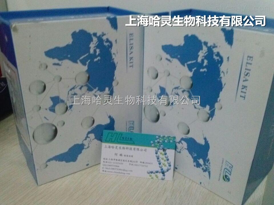 sp免疫组化检测试剂盒(兔)