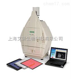 美国BIO-RAD ChemiDoc XRS+ 化学发光成像系统货号1708265