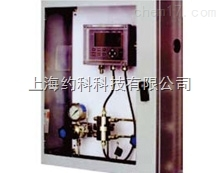 在线氢气分析仪 CHA在线氢气分析仪 CHA