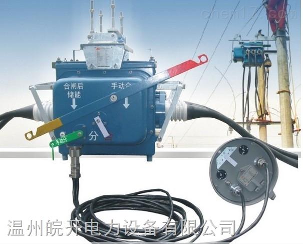 10KV户外高压负荷真空断路器FZW28-12F/630-20
