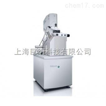 TESCAN RISE扫描电镜