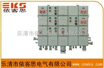 BXMD59-2/4/6/K100防爆防腐照明配电箱(动力)