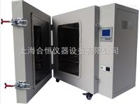 DHG-9249A工业高温烘箱500度