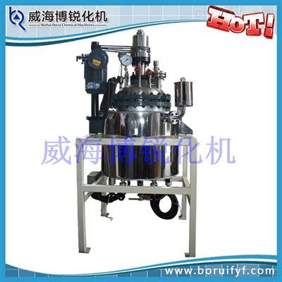 GSH型系列高压反应釜