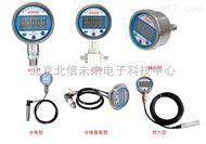 JC20-DWG-8004在线氯离子监测仪