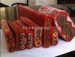 硅橡胶护套扁平电缆