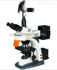 HG13-BM-21AY无限远复消色差荧光物镜