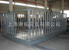 SCS-屠宰场3T动物地上衡代理商