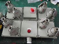 BXX52-3防爆插座箱无火花插座/AC防爆插座防爆箱