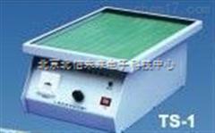 HG24-TS-1水平转移脱色摇床