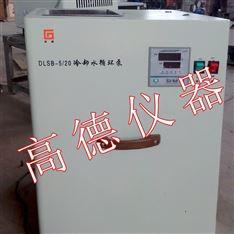 数显低温冷却循环泵