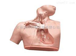 TKMX/72高级肠外营养护理模型