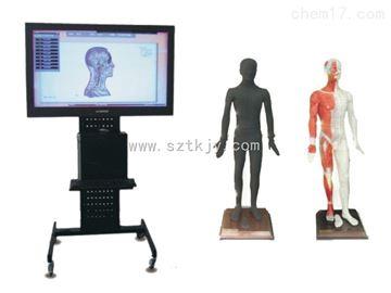 TKMX/ZJ-WST55M55寸多媒體人體針灸穴位交互數字平臺