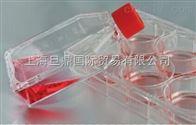 191-0181科晶191-0181细胞培养瓶,细胞培养瓶