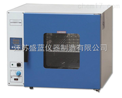 DHG-9101-0电热恒温鼓风干燥箱