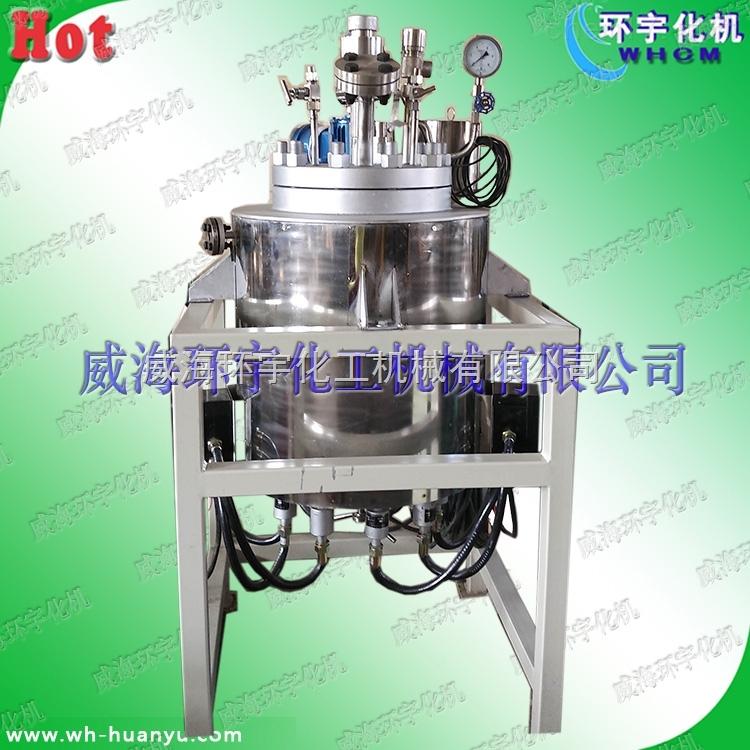 高温高压电加热磁力反应釜10L