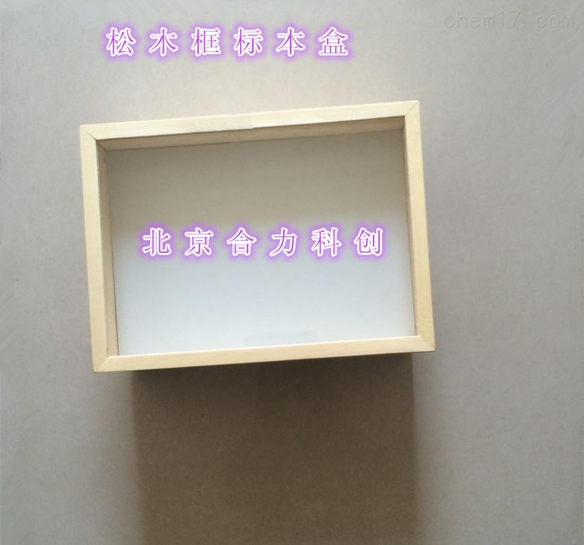 松木标本盒 昆虫标本盒 批发 定做