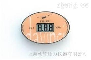 dV-1进口数字压力表
