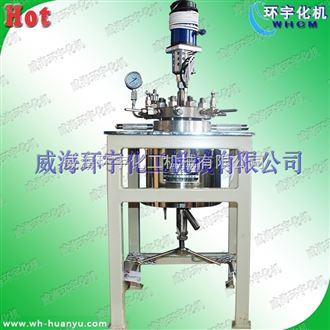 GSH-高温高压电加热磁力反应釜2L