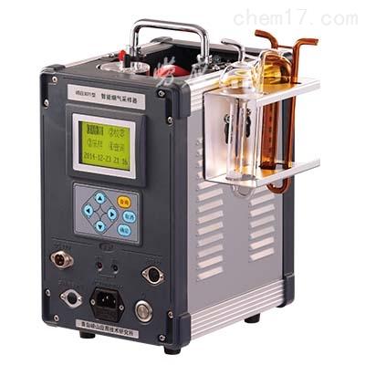 固定污染源测定DL-6600型智能双路烟气采样器厂家
