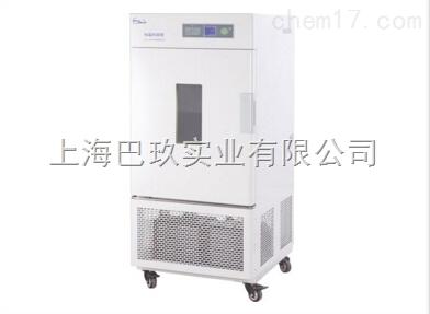 恒温恒湿箱(简易型)LHS-250SC生产厂家