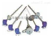 WZP2-2212A固定螺纹式热电阻
