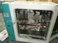 101-2A精密恒温鼓风干燥箱,上海电热恒温鼓风干燥箱