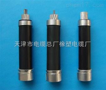 JKLGYJ架空电缆 JKLYJ-10KV架空电缆