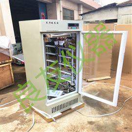 250D智能光照培养箱