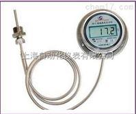 DTM-411数字温度计