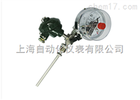 WSS-481带热电偶(阻)