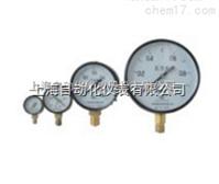 Y-60T径向带前边压力表 0-0.1Mpa
