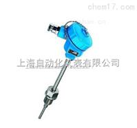 WRN-84 螺纹管接头式防爆热电偶